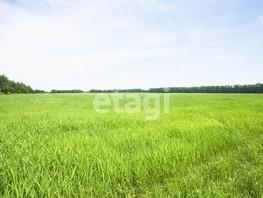 Земельный участок, Центральный