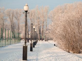 В Иркутске в 2020 году начнут благоустраивать парк «Комсомольский»