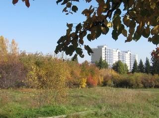В Иркутске начали отыгрывать аукционы на благоустройство в 2021 году