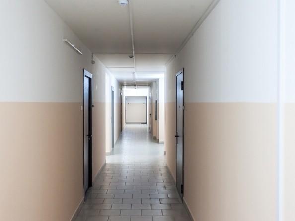 5 июля 2017. Внутренняя отделка холла