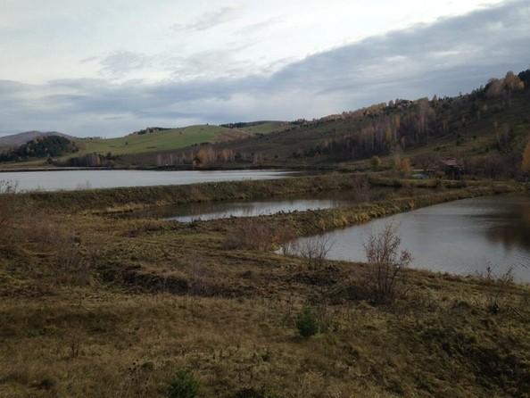 Продам  земельный участок, 70000 соток, Алтайское. Фото 3.