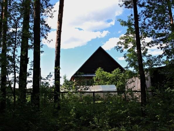 Продам дом, 95.6 м², Бийск. Фото 4.