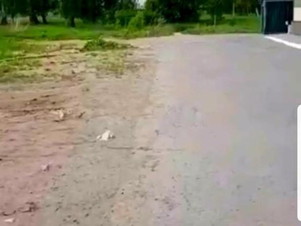 Продам  земельный участок, 550 соток, Павловск. Фото 5.