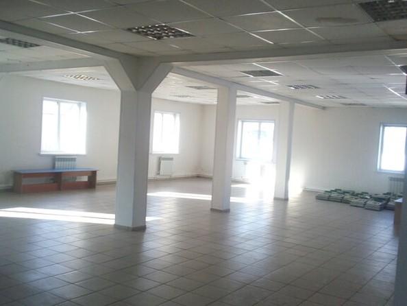 Продам помещение свободного назначения, 350 м², Правый Берег Пруда ул. Фото 2.