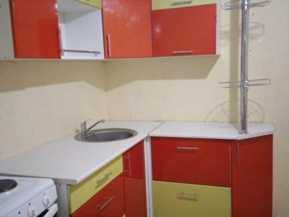 Сдам в аренду 1-комнатную квартиру, 50 м², Барнаул. Фото 5.