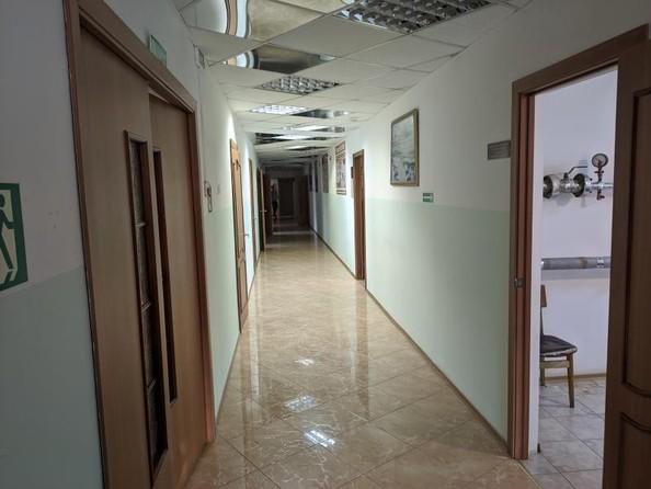 Сдам нежилое универсальное помещение, 384 м2, Пискунова ул, 140/1. Фото 3.