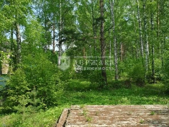 Продам  участок ИЖС, 15 соток, Елыкаево. Фото 1.