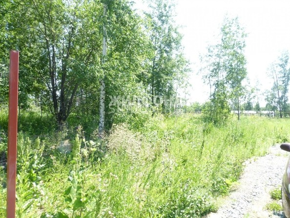 Продам  земельный участок, 10 соток, Садовый. Фото 2.
