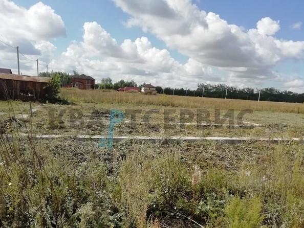 Продам  земельный участок, 1000 соток, Ракитинка (Морозовского с/п). Фото 5.