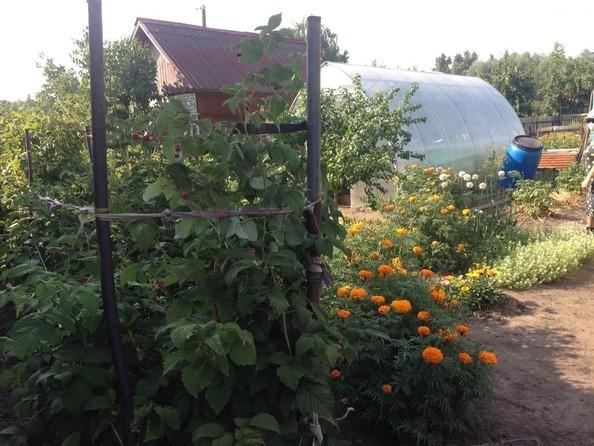 Продам дом, 50 м², Омск. Фото 31.