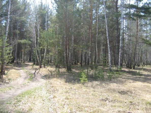 Продам  земельный участок, 72 соток, Чернолучье. Фото 1.