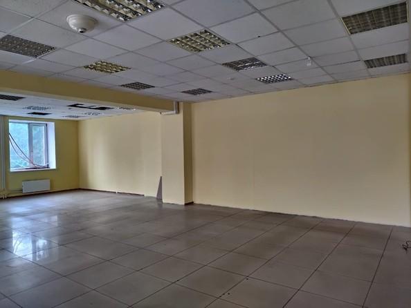 Продам помещение свободного назначения, 130 м2, Карповский пер, 13. Фото 8.