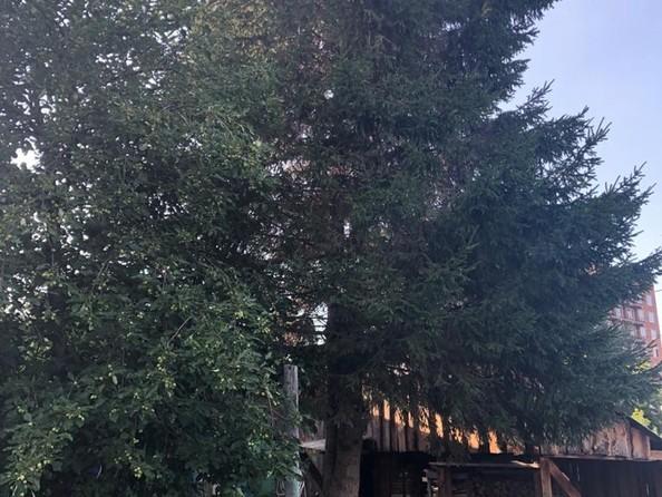 Продам дом, 22 м², Томск. Фото 7.